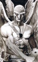 Hawkman by craigcermak