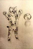 Cat and the World by chloeb655