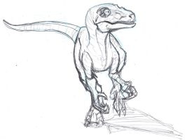 Velociraptor Sketch by ConstantScribbles
