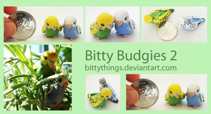 Bitty Budgies 2 - SOLD by Bittythings