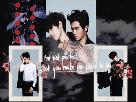 Dongwoo Hoya - I am not perfect by Sweety-B