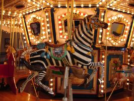 Carousel Zebra Steed by FantasyStock