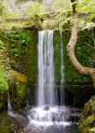 Small Falls by BusterBrownBB