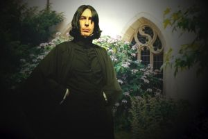 This is WilliamSnape by WilliamSnape