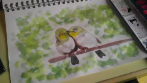 Cute birds by Carrie-AnneSevenfold