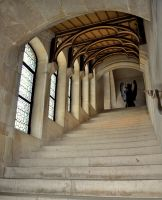 Pierrefonds Castle - Camelot staircase interior by MorgainePendragon