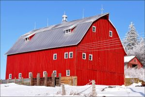 Red Barn in Winter by bacardi870