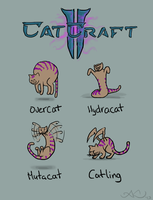 Catcraft 01 by Aldeminor