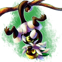 December 6th, 2016: Passimian