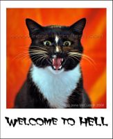Welcome To Hell... Kitty by substar