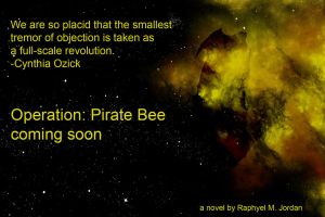 Operation Pirate Bee Ad 3 by rmj7
