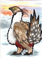 Greater Sage Grouse ATC by Tailsdahedgehog