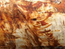 Wood_IN-TEXTURE014 by laurent68