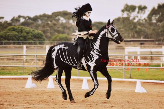 This is my Skelton.... by silhouette-equus