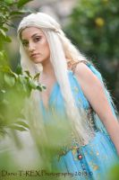 I am the wife of the great Khal by RikaHaruMoonbeam