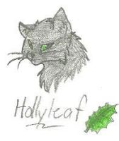 Hollyleaf by Rockstar-97