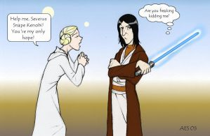 Potions Master or Jedi Master? by laerry