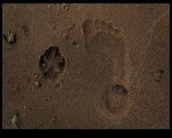 Footprints in the sand by chipset