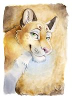 Doodley doo lioness by theOlven