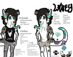 Laney temporary Ref by Disass0ciative