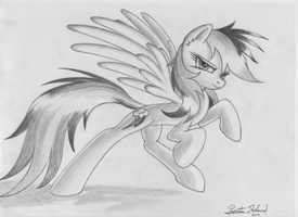 Rainbow Dash greyscale 78 by RatchetHuN