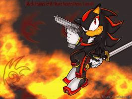 shadow the hedgehog by ancode