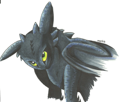 Toothless by SnowstormSpirit2285