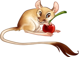 kangaroo rat by gabfury