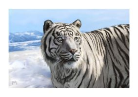 White Tiger by brooksart