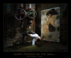 Sleepy Princess on the Wall... by Xantipa2-2D3DPhotoM