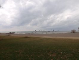 Hamlin Beach State Park - 23 by blackhavikgraphics