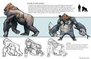 Gorilla Study by JetEffects