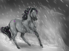 Safe in the Storm .:CP:. by Allixi