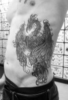 Phoenix, Black and Gray by PainlessJames