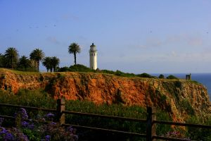 Spring at Pt. Vicente by dale427