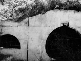 Hobbit Hole by MariMcGee