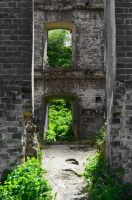 Dead ruins and nature by Villainess-Vi