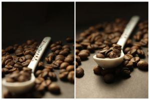 Bathed in coffee II by adwaa95
