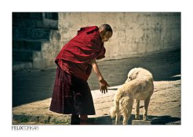 A Monk And A Dog by FelixTo