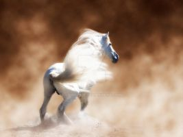 In The Dust by Deirdre-T