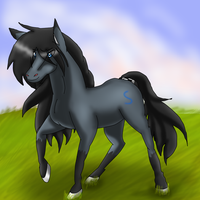 Splendhy the horse by gisselle50