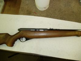 Mossberg 151k by FNPhil