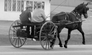 Amish Way Of Life III by Photos-By-Michelle