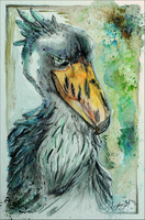 Shoebill by SunStateGalleries