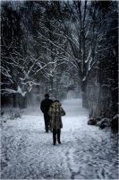 Couple in the Snowstorm by gregorland