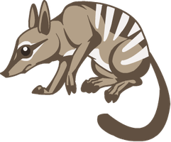 Numbat by Ruusho