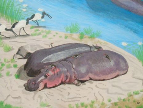 Resting hippos on a beach. by Pappasaurus