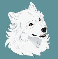 the Samoyed by Mr-SKID