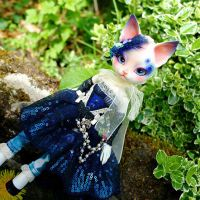 Blue Mittens in nature by Atelier-Cynamon