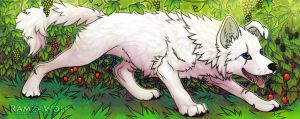 Nearo and Forest of Berries by RamzaWolf